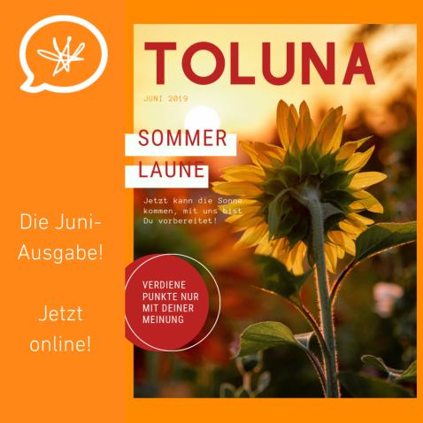 Copy of Toluna IG.png